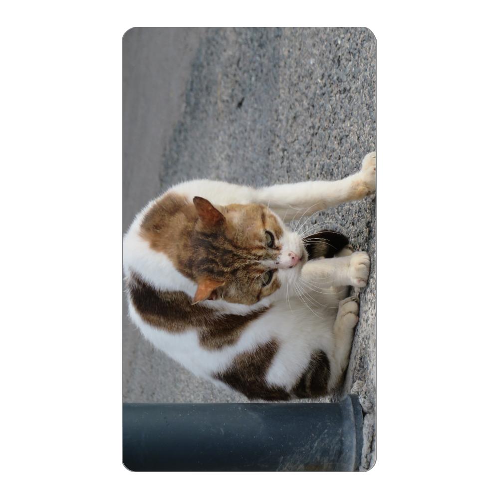 猫 モバイルバッテリー インジケータ無バッテリー4000mAh