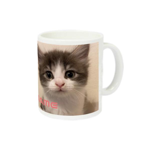 猫ラジマグカップ まめちゃん編 スーパーホワイトマグカップV1