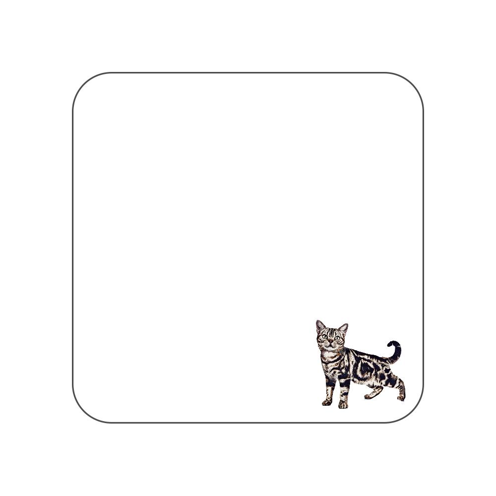 雨リカンショートヘア猫のタオルハンカチ ホワイト 全面プリントハンカチタオル
