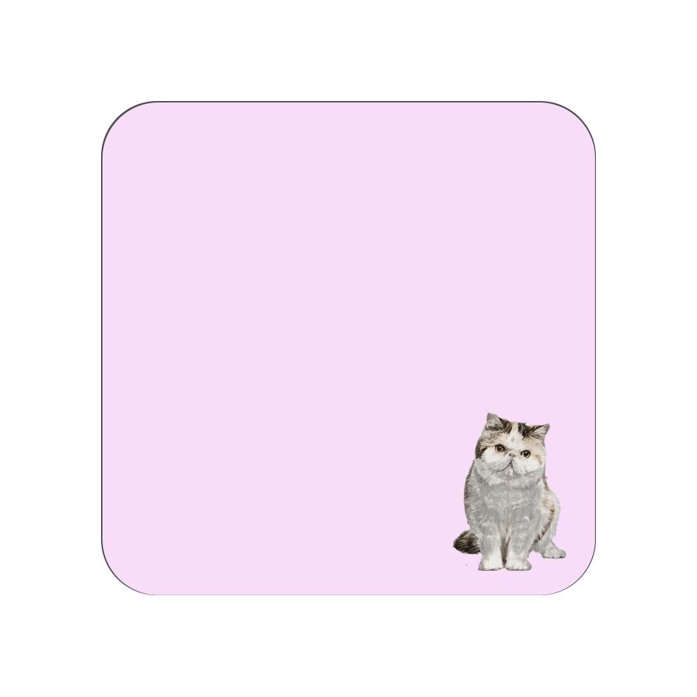 エキゾチックショートヘア猫のタオルハンカチ ピンク 全面プリントハンカチタオル