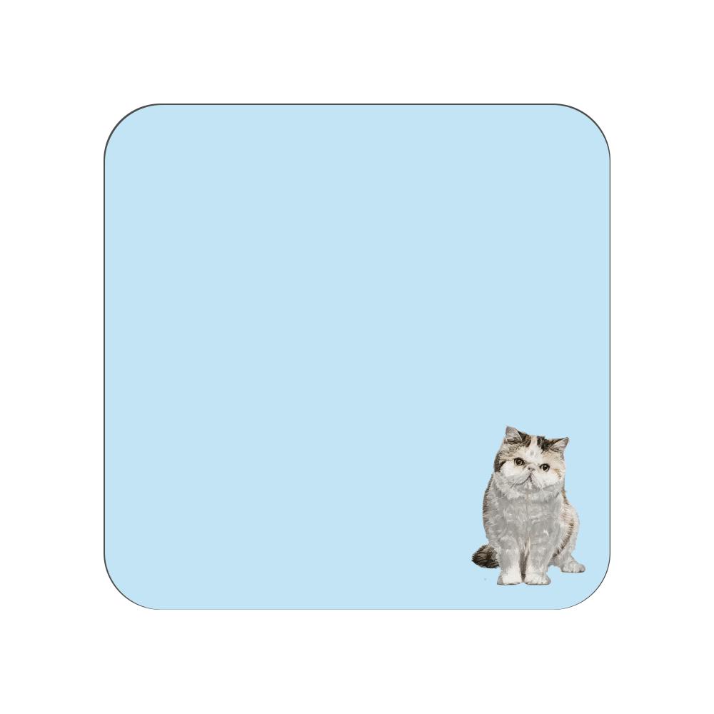 エキゾチックショートヘア猫のタオルハンカチ ブルー 全面プリントハンカチタオル