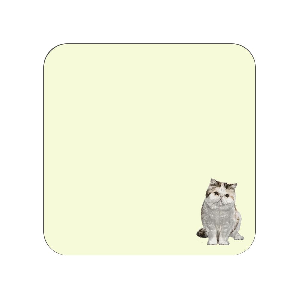 エキゾチックショートヘア猫のタオルハンカチ イエロー 全面プリントハンカチタオル