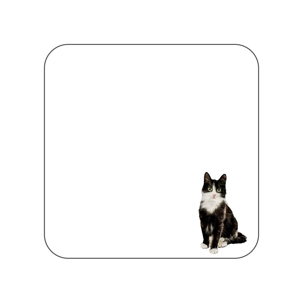 白黒猫のタオルハンカチ ホワイト 全面プリントハンカチタオル