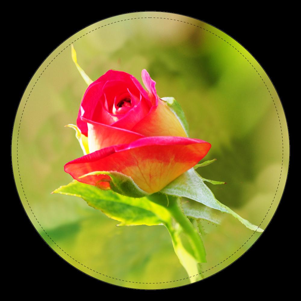 fleur-02 コインケース