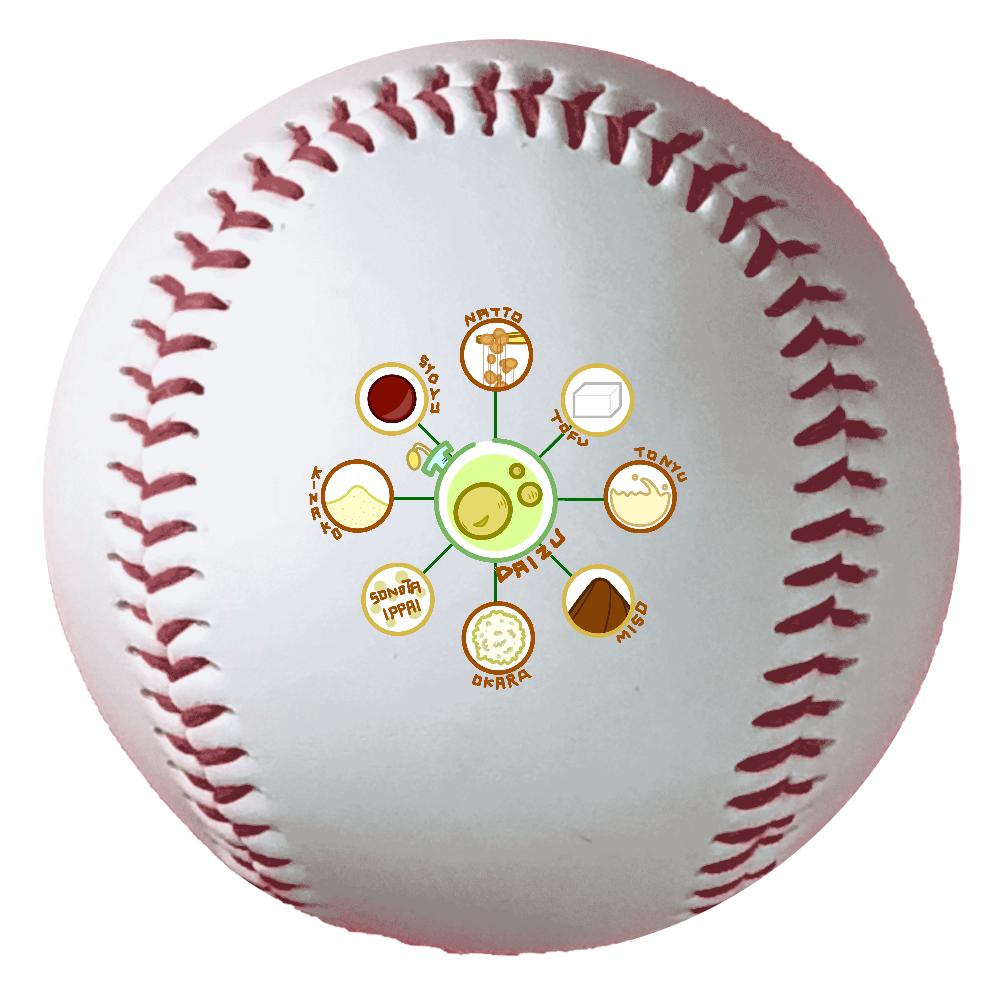 超食材大豆 野球ボール(硬式) 野球ボール(硬式)