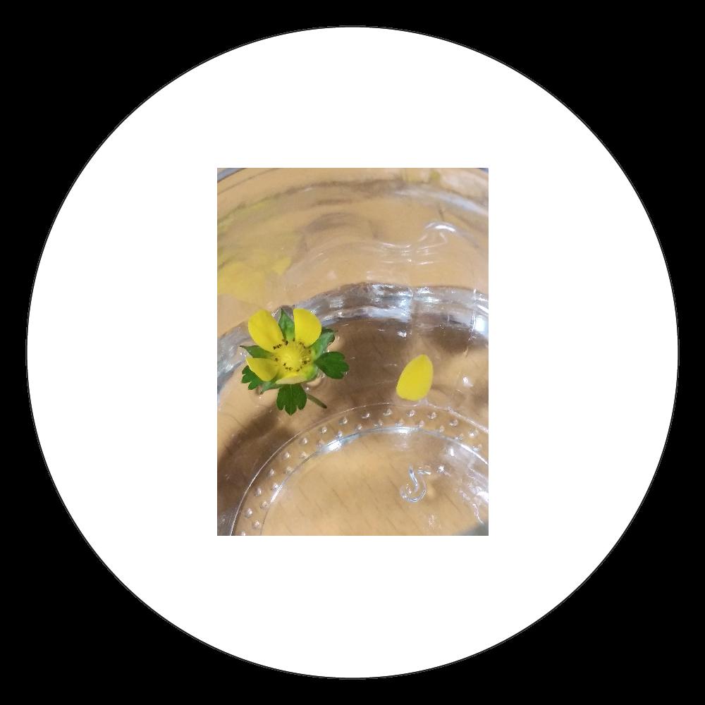 ヘビイチゴのお花 白雲石コースター 丸
