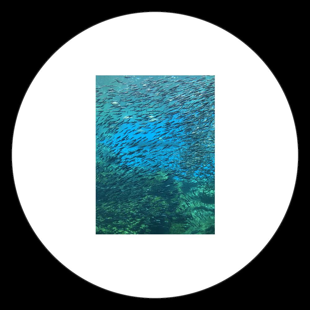 海の癒し 白雲石コースター 丸