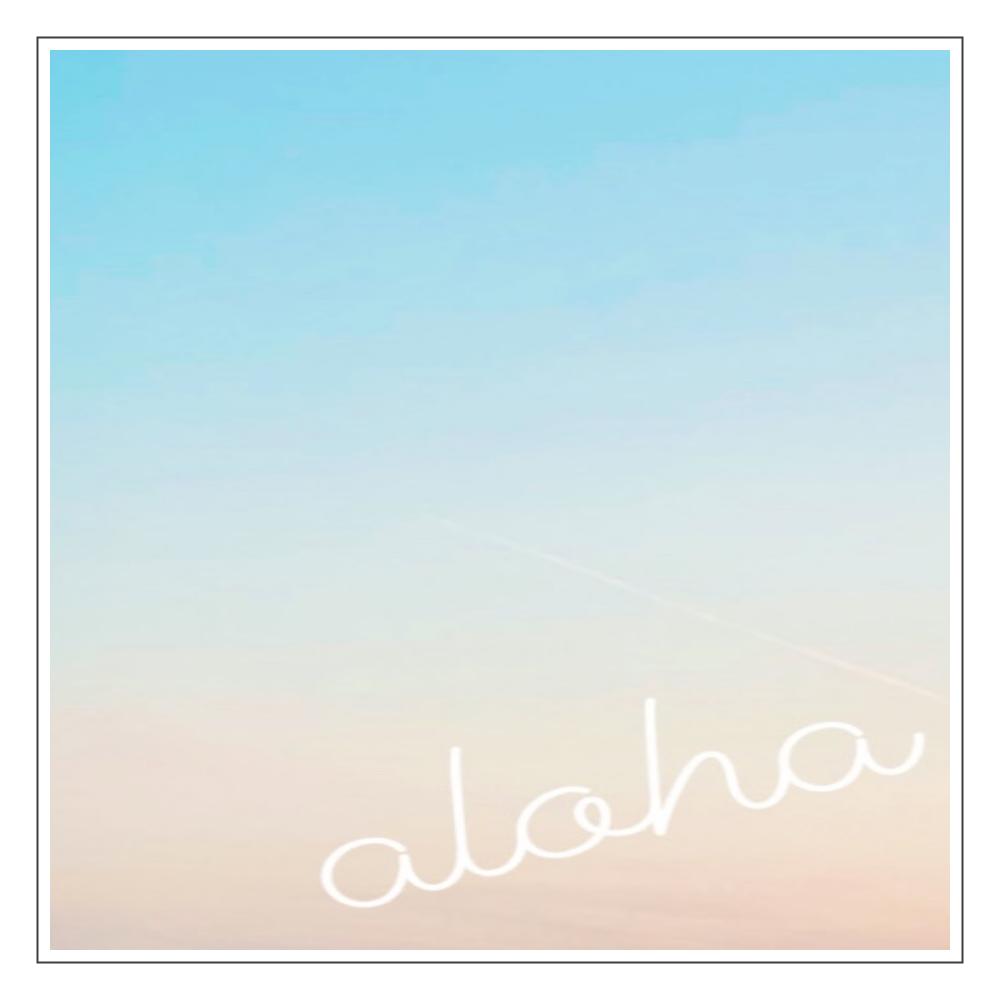 alohaパネル♡ アクリルブロック