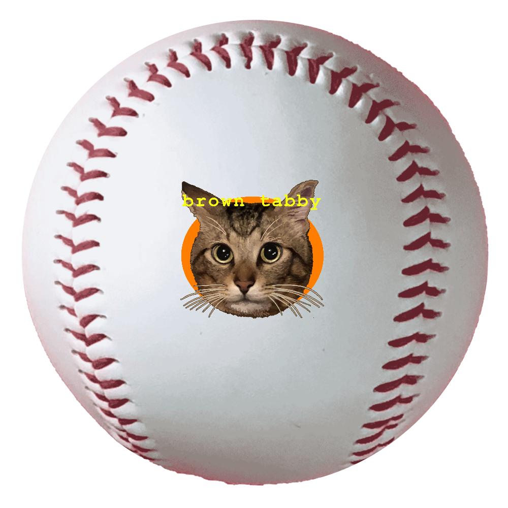 キジトラ大好き 野球ボール(硬式)