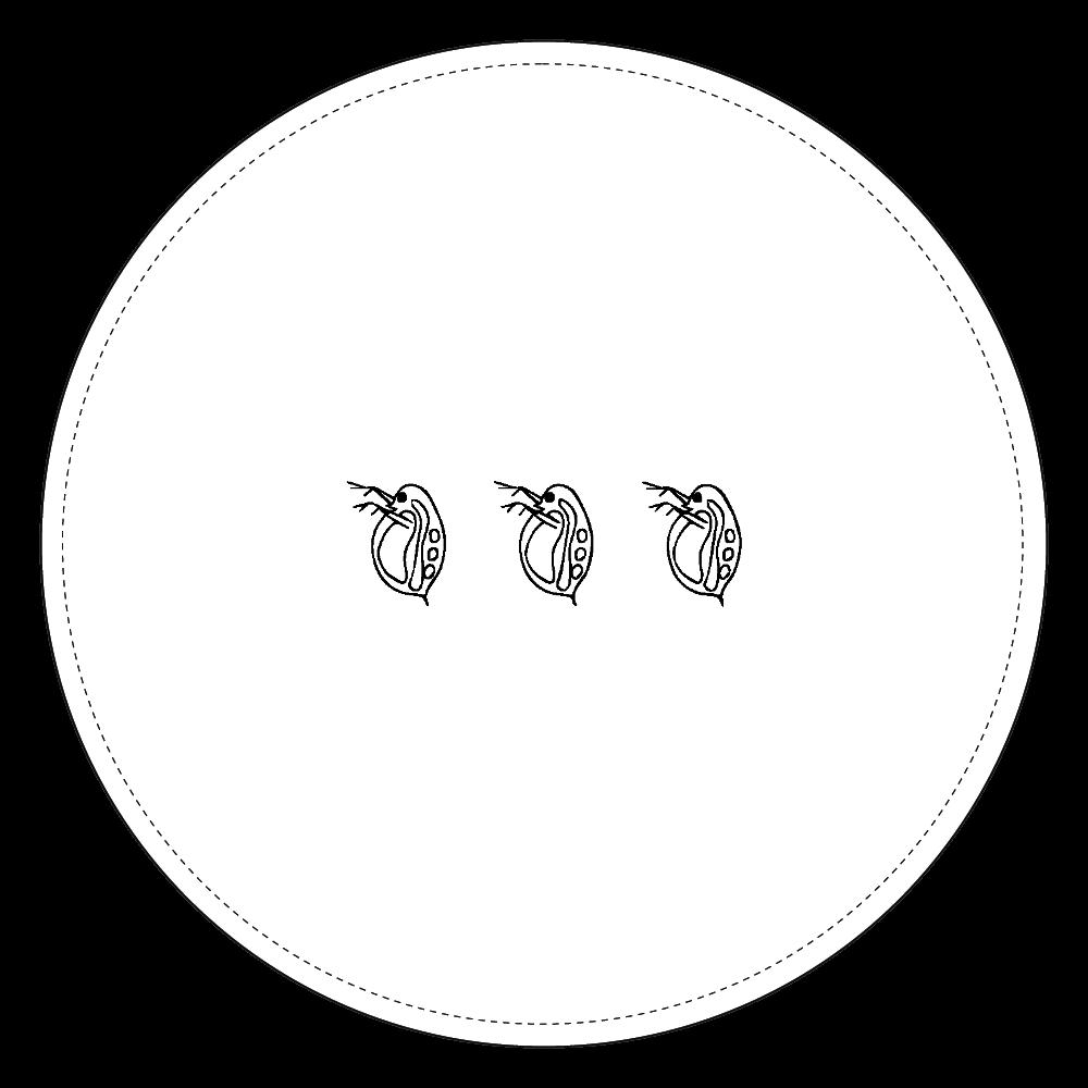 ミジンコ コインケース