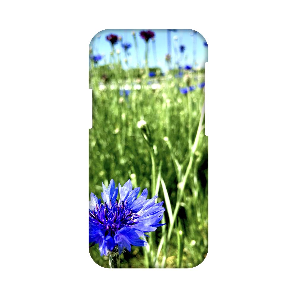青い花と空 iPhone12 mini