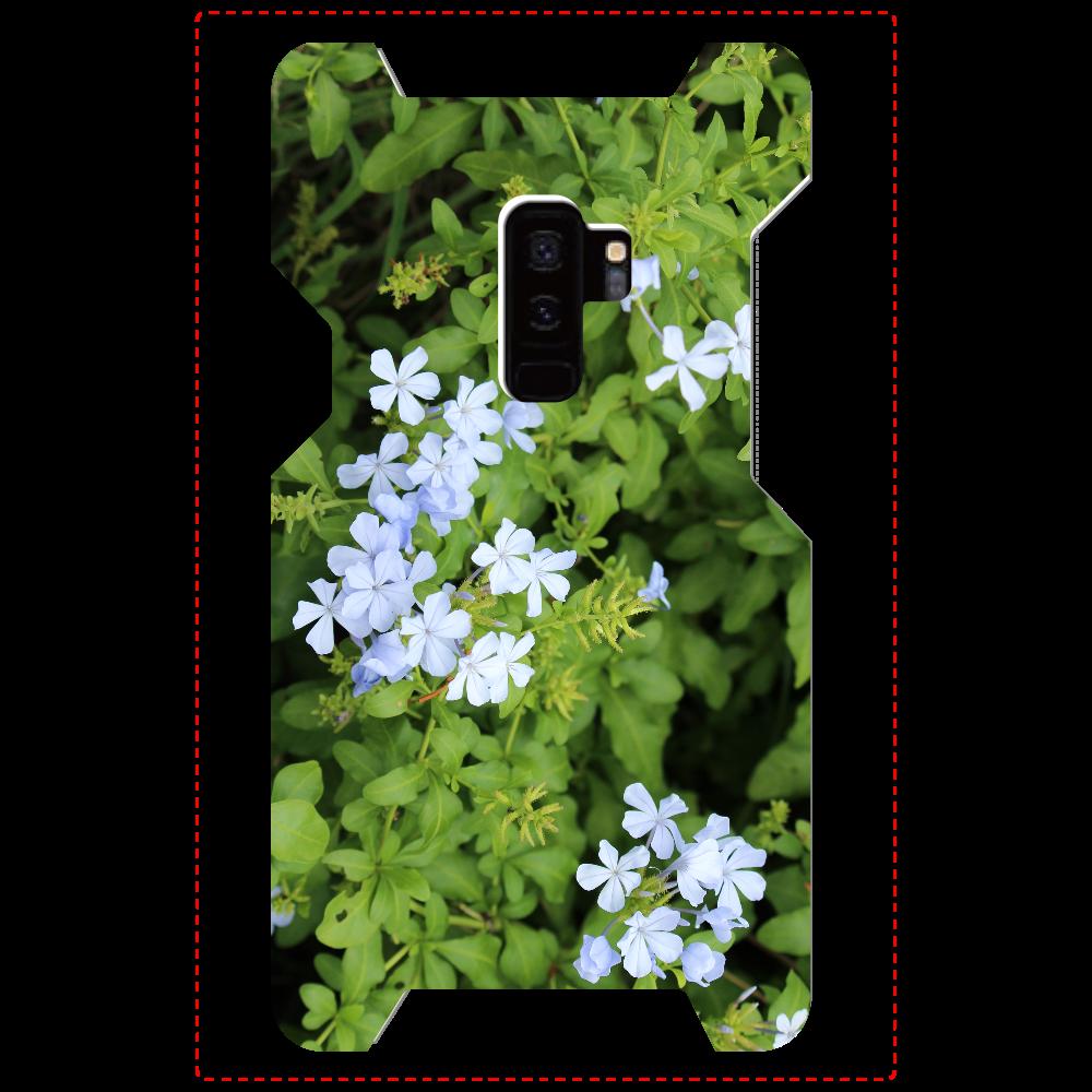 Galaxy S9+ [プルンバゴ(ルリマツリ)] 植物写真 #0001 Galaxy S9+(SC-03K)
