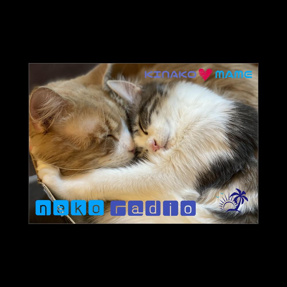 猫ラジブランケット♪ きなこ&まめ編 ブランケット - 700 x 1000 (mm) - ポリエステル