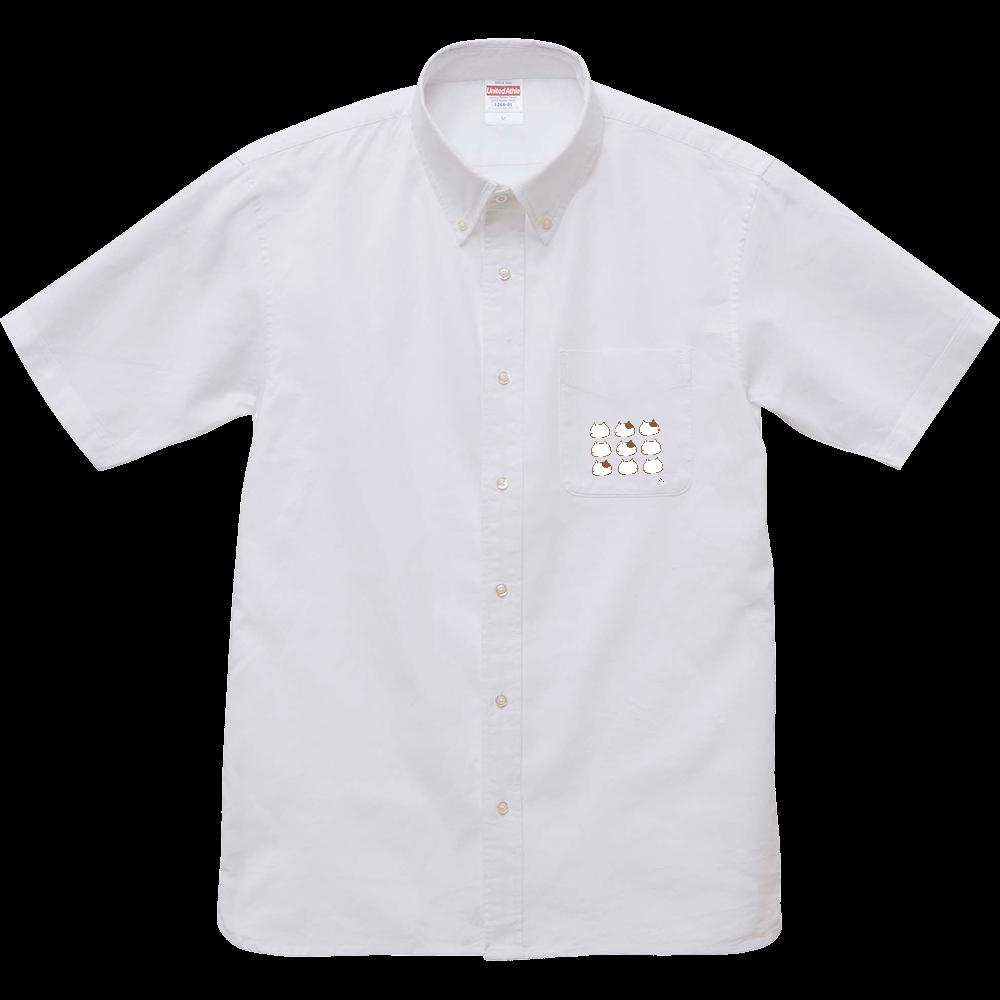 猫の整列 オックスフォードボタンダウンショートスリーブシャツ