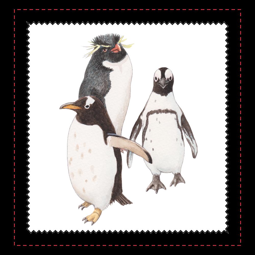 ペンギンのメガネ拭き マイクロファイバーメガネ拭き