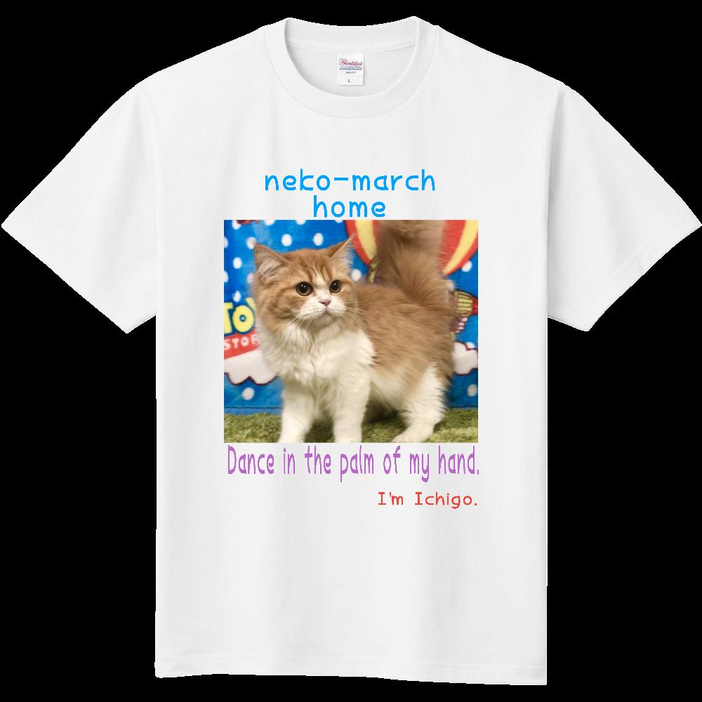 ねこまーちhomeいちごスタイルTシャツ 定番Tシャツ