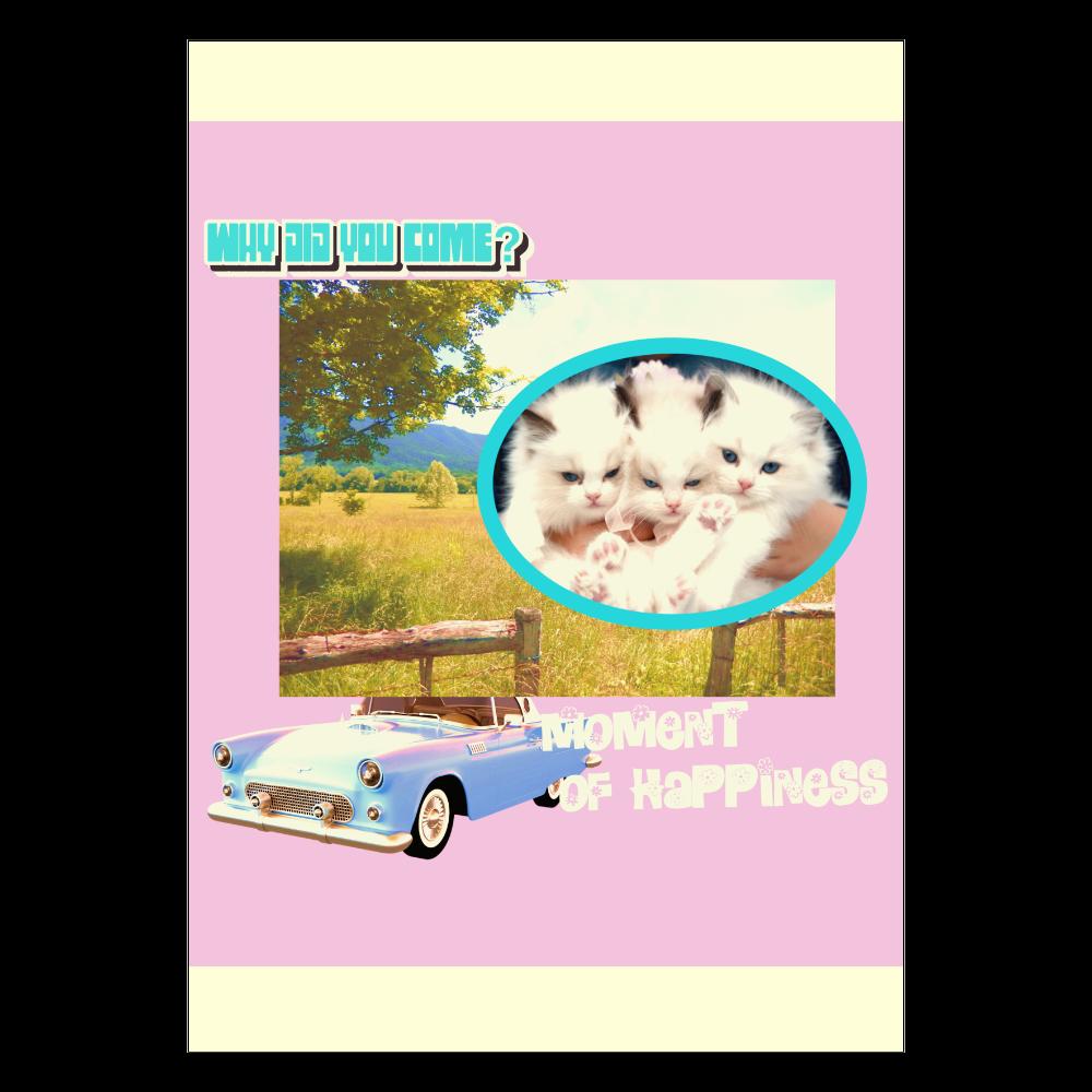 ポスター A2サイズ ホワイト 猫ちゃん ポスター A2サイズ