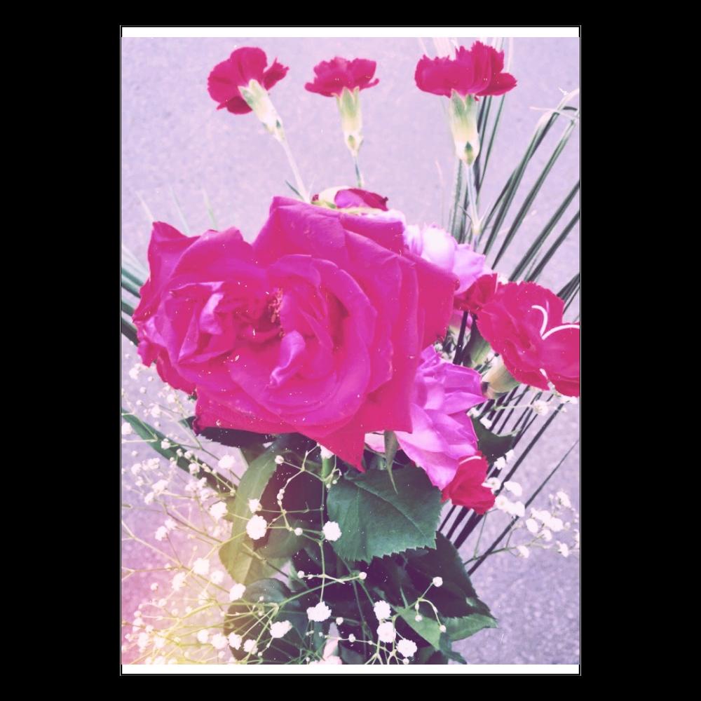 ピンクのシャクヤクphotoシリーズ ポスター A2サイズ