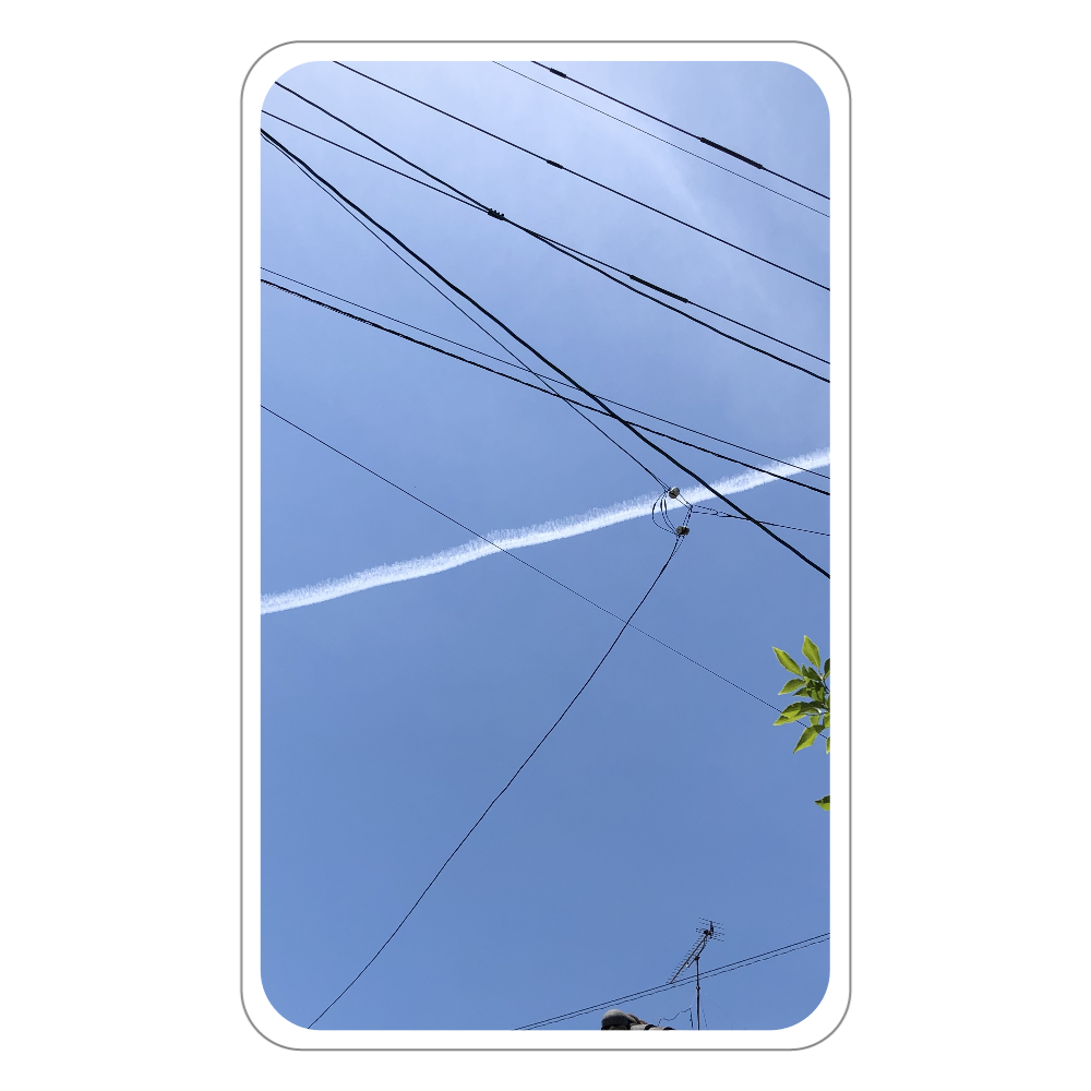 パスケース(飛行機雲) フラットパスケース
