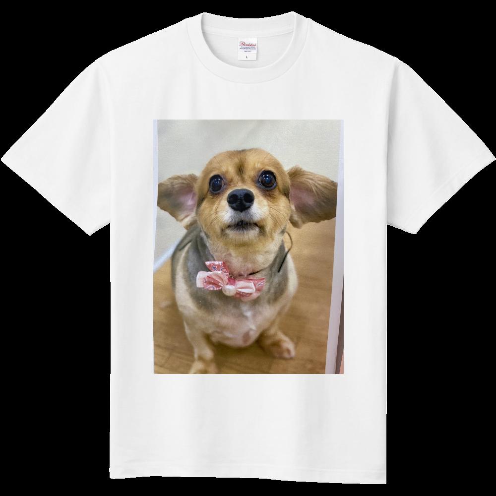 チワックス 定番Tシャツ