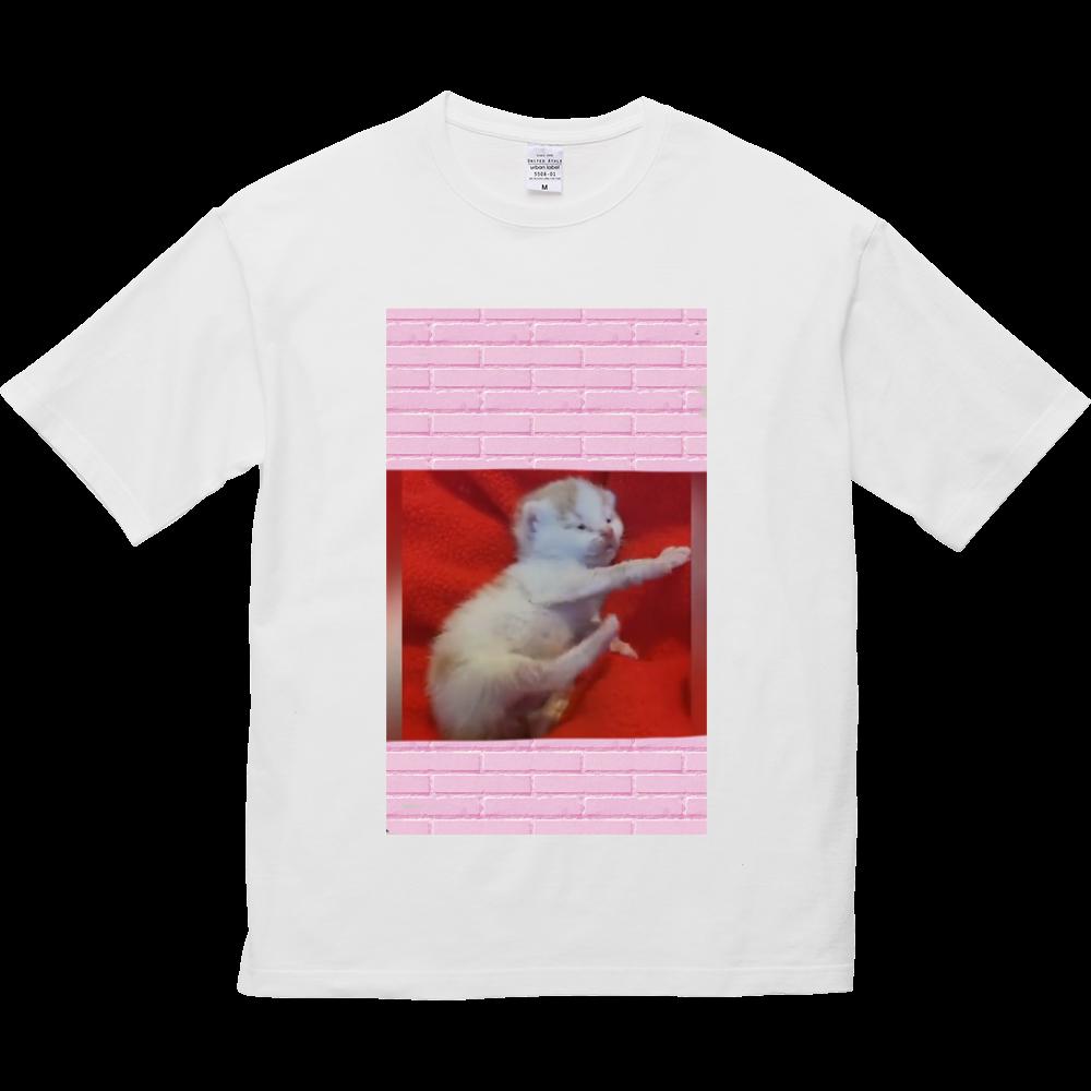 仔猫 5.6オンス ビッグシルエット Tシャツ