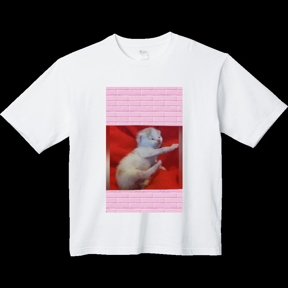 仔猫 ヘビーウェイト ビッグシルエットTシャツ