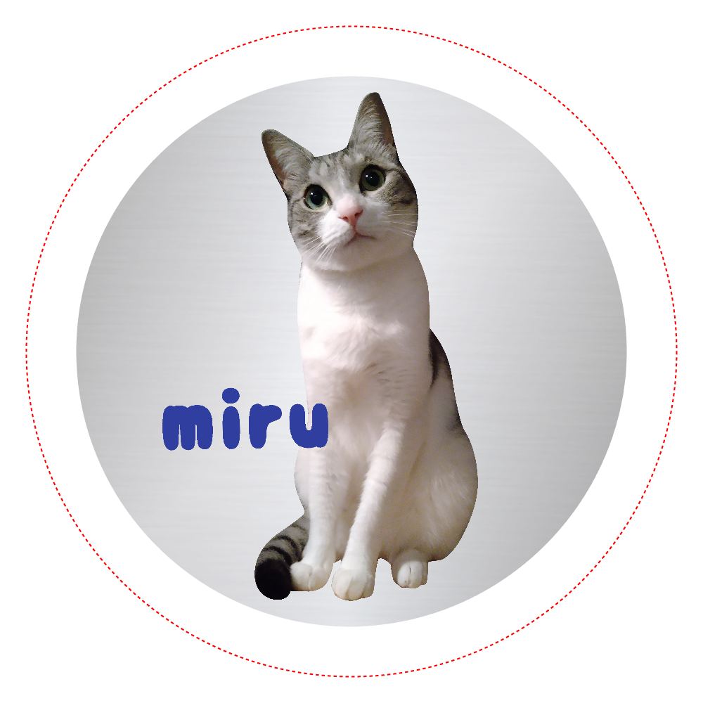 Miruちゃん・缶バッジ オリジナル缶バッジ(44mm)