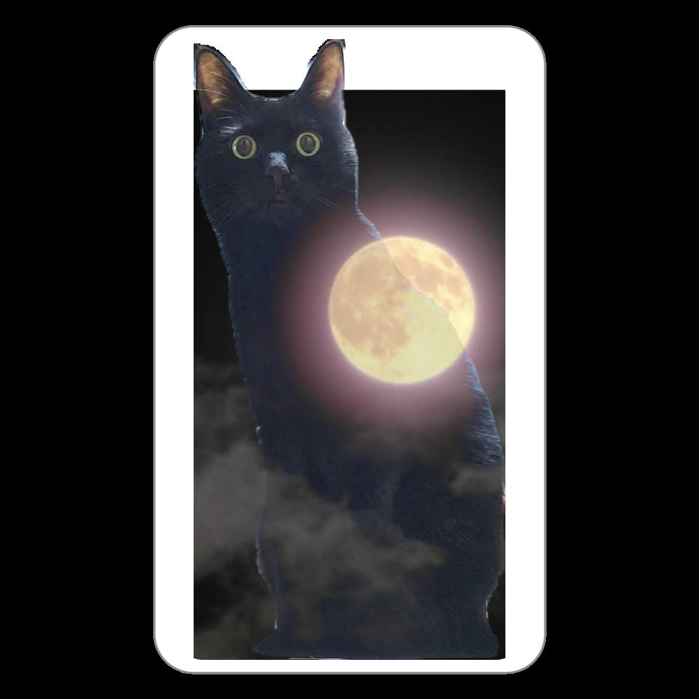 黒猫(ソラ)と月  フラットパスケース