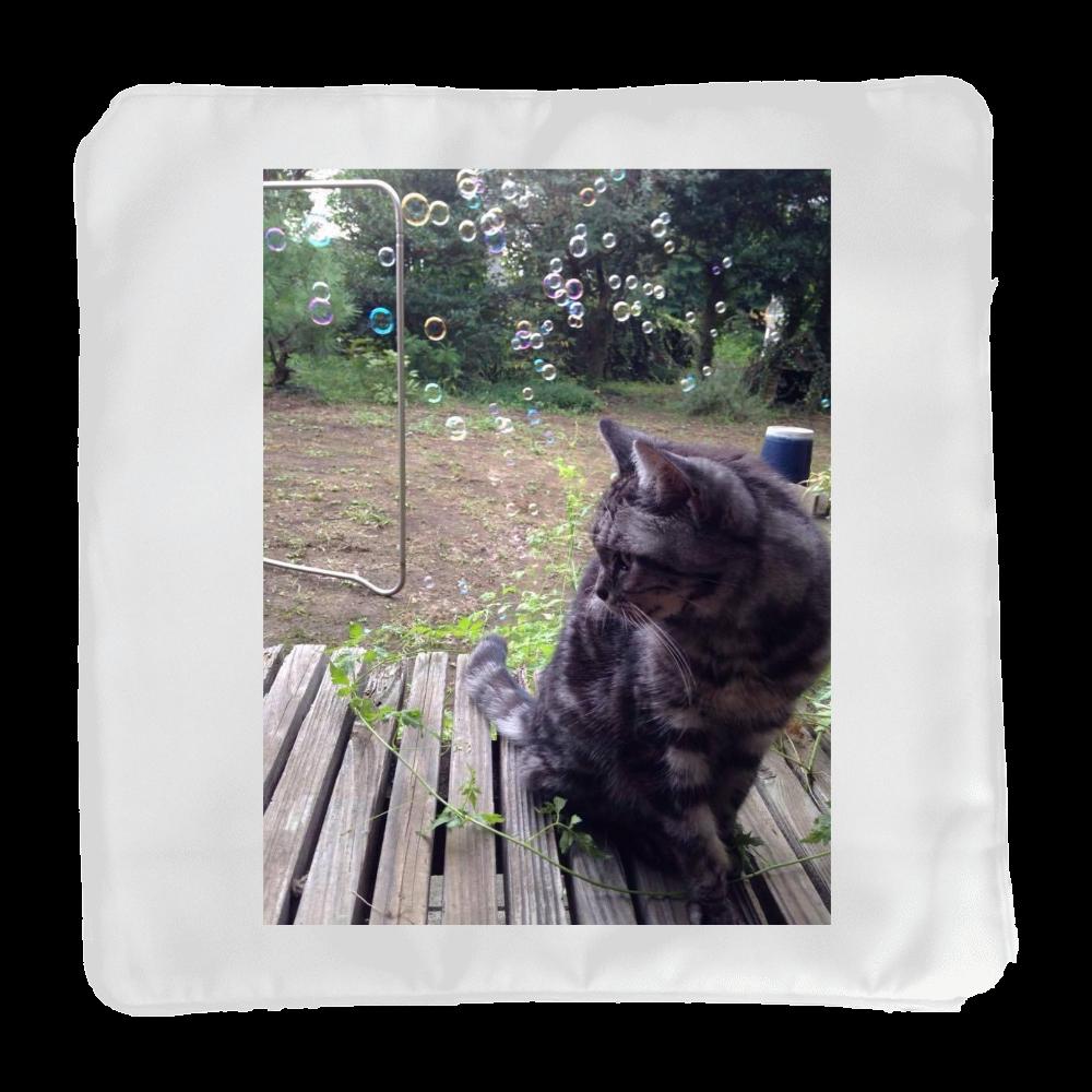 猫・おはるさん クッション(小)