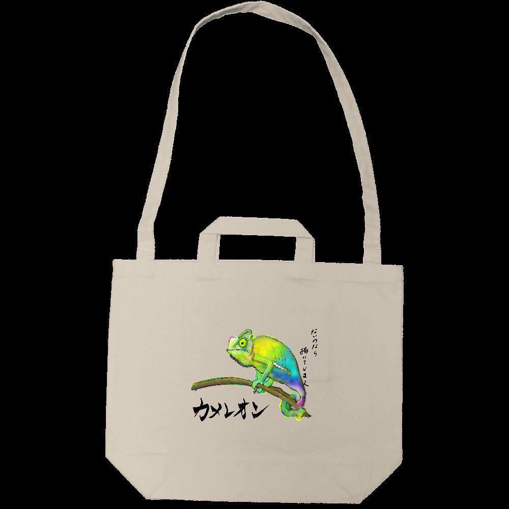 カメレオン goods MiZ キャンパスショルダートート キャンバスショルダートート(ポケット付)