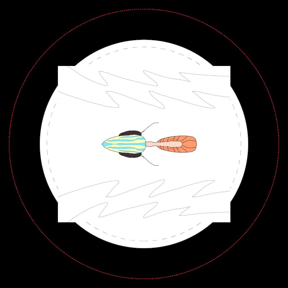 三葉虫4  44㎜缶バッジ