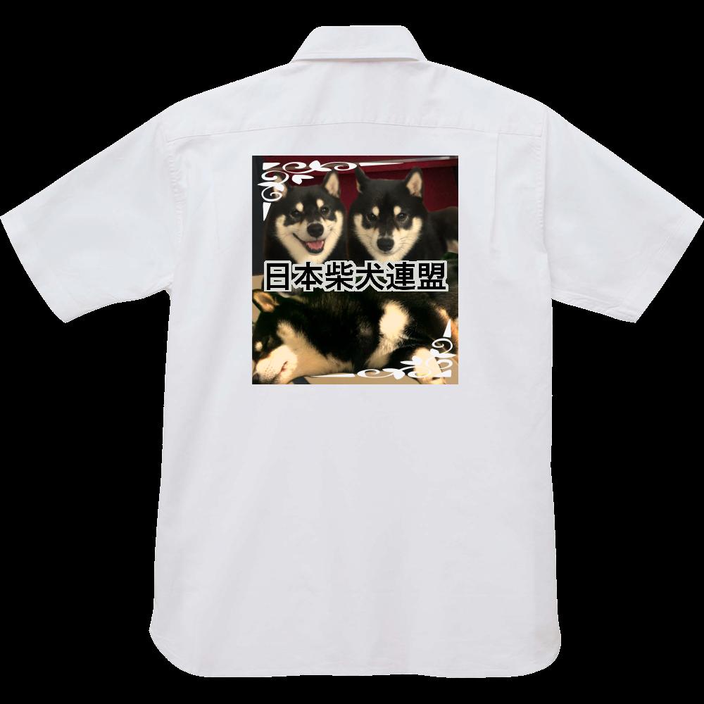 日本柴犬連盟シャツ オックスフォードボタンダウンショートスリーブシャツ
