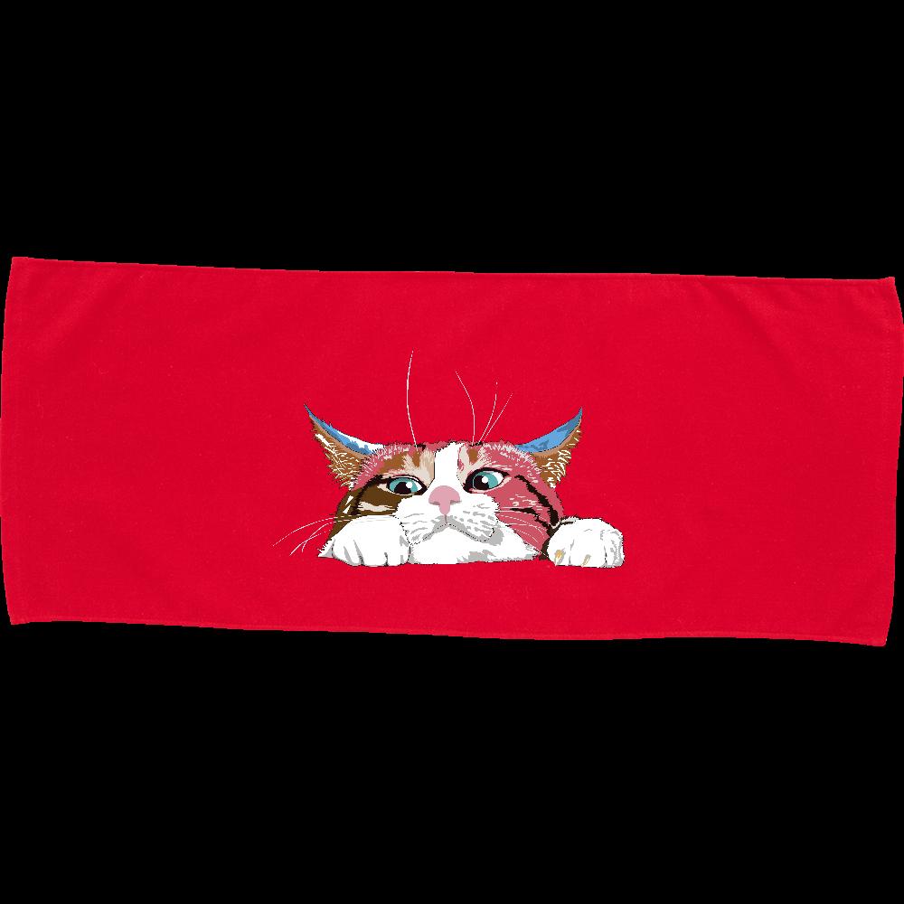 猫シリーズ のぞき見猫 カラーフェイスタオル