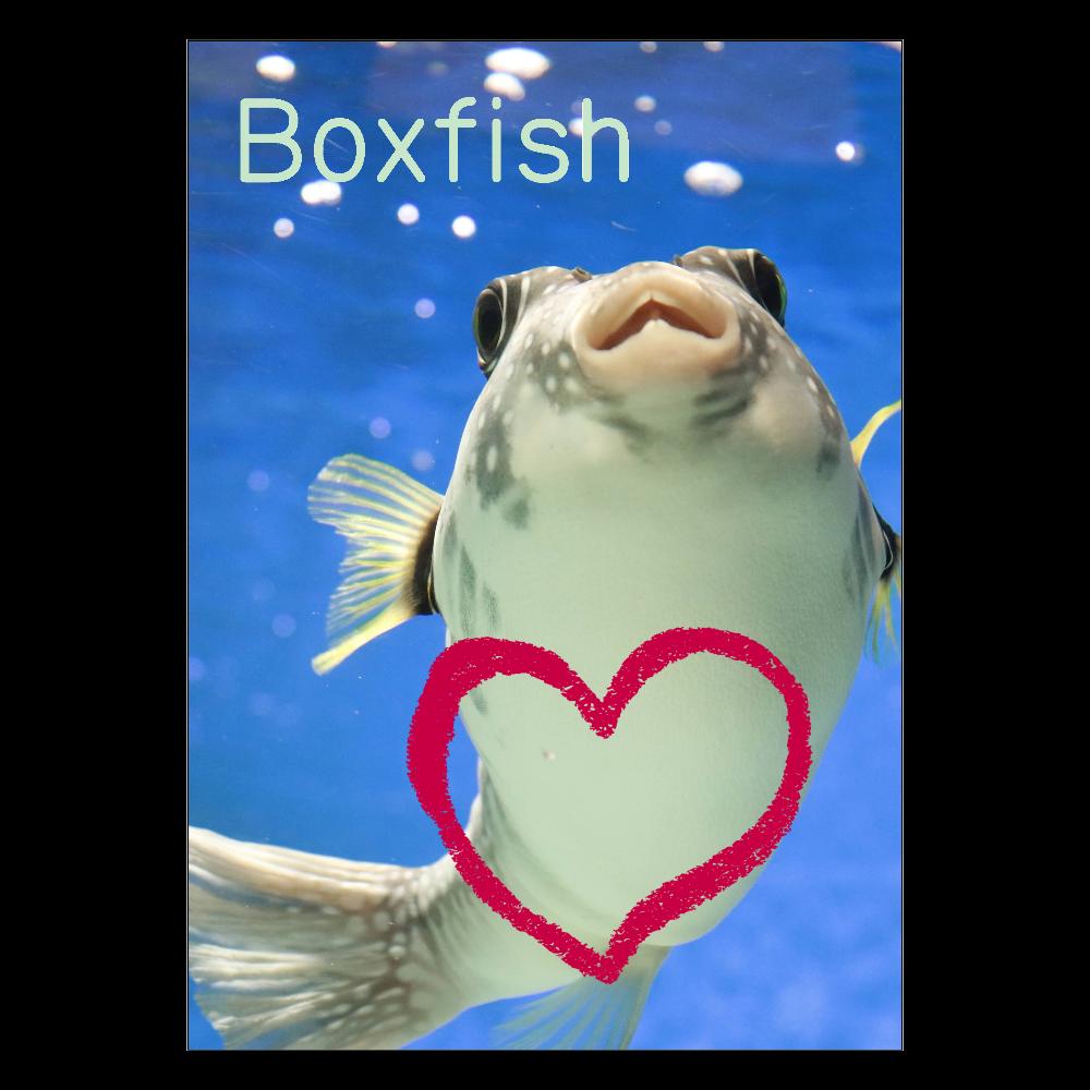 Boxfish with me~品川水族館のはこふぐの激かかわショットのポスター ポスター A2サイズ