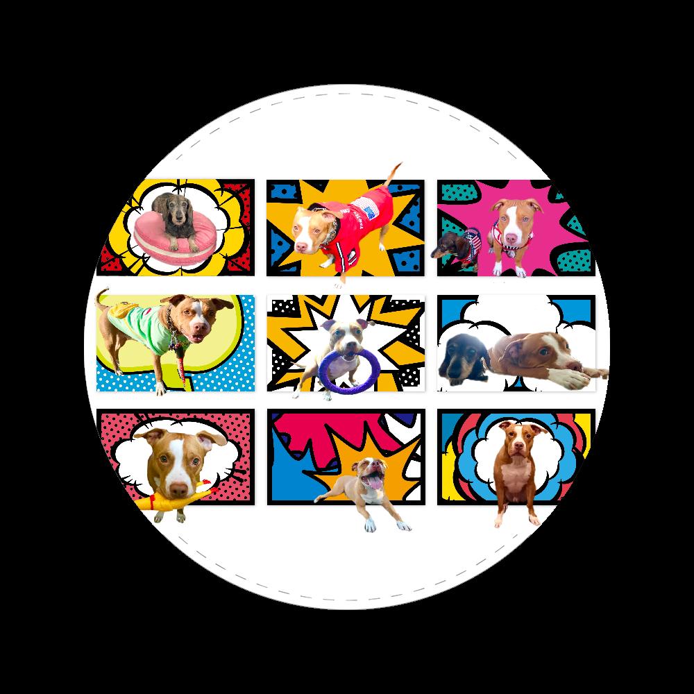 ミニチュアダックスとピットブル☆ 56㎜缶バッジ