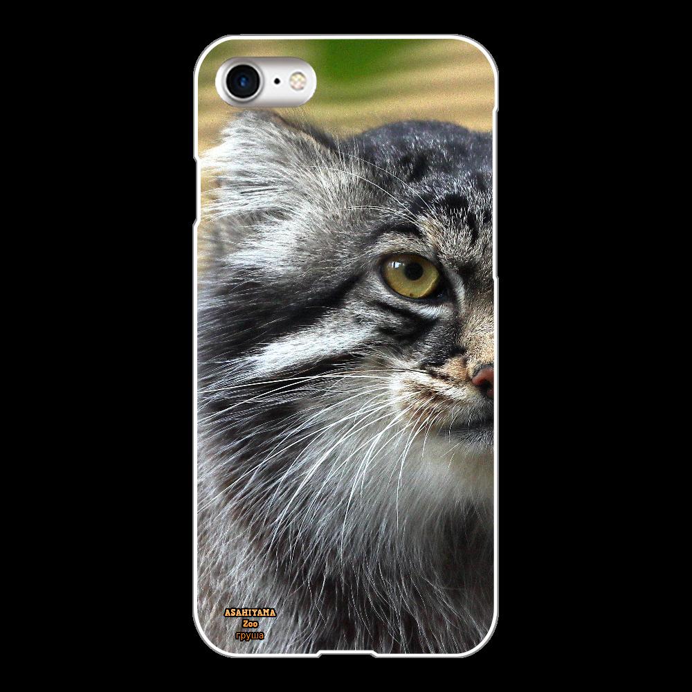 マヌルネコ「グルーシャ」(旭山動物園)  iPhone8(白) iPhone8(白)