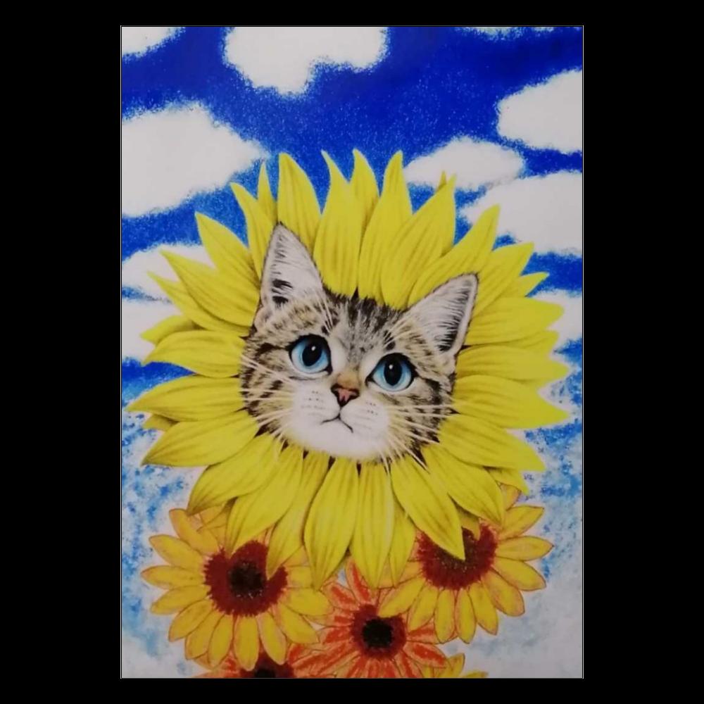 ポスター ひまわり猫 ポスター A2サイズ