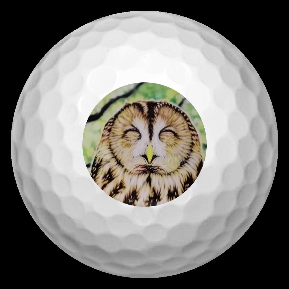 ゴルフボール3個 ふくろう ゴルフボール(3個セット)