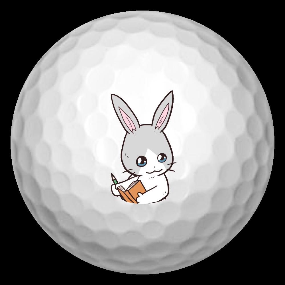 つぶやきブラウン ゴルフボール ゴルフボール(3個セット)