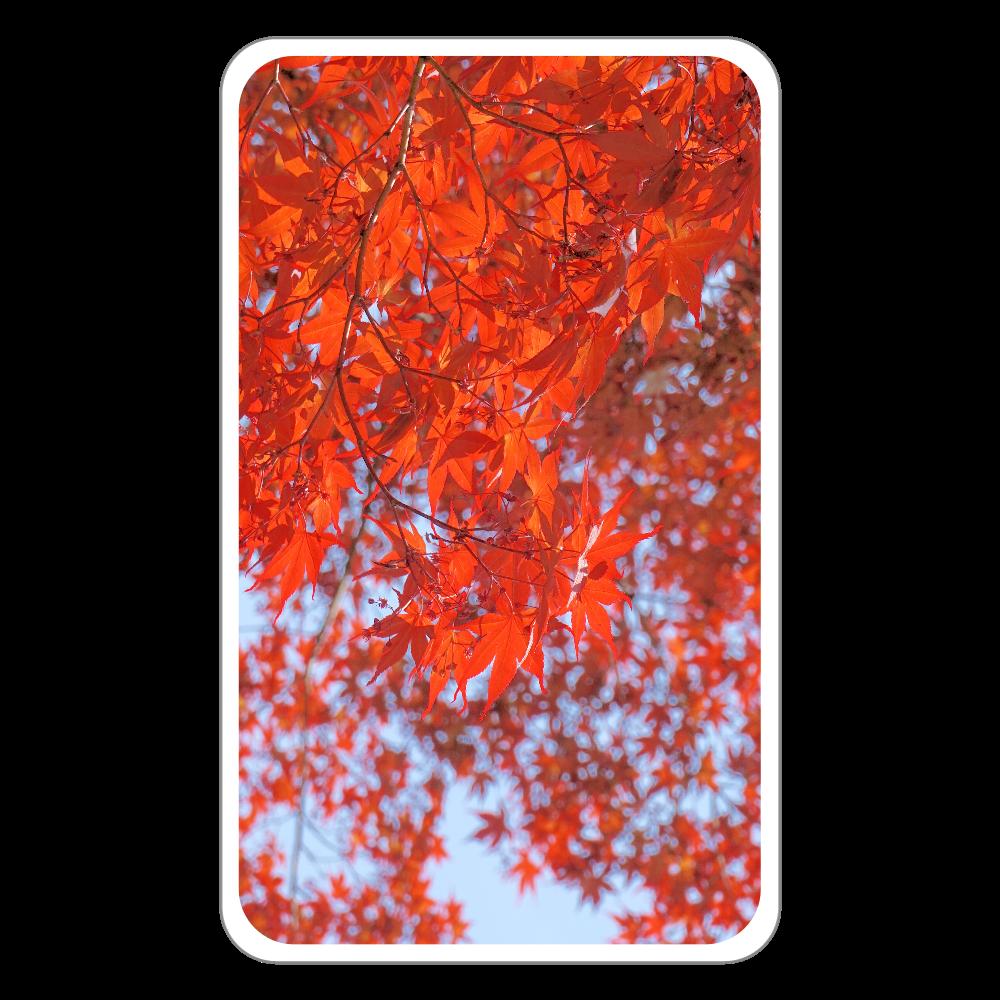 秋 ~紅葉~ フラットパスケース