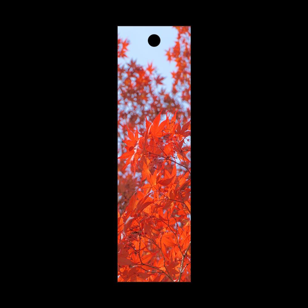秋 ~紅葉~ 短冊型アクリルキーホルダー (W20mm H70mm)