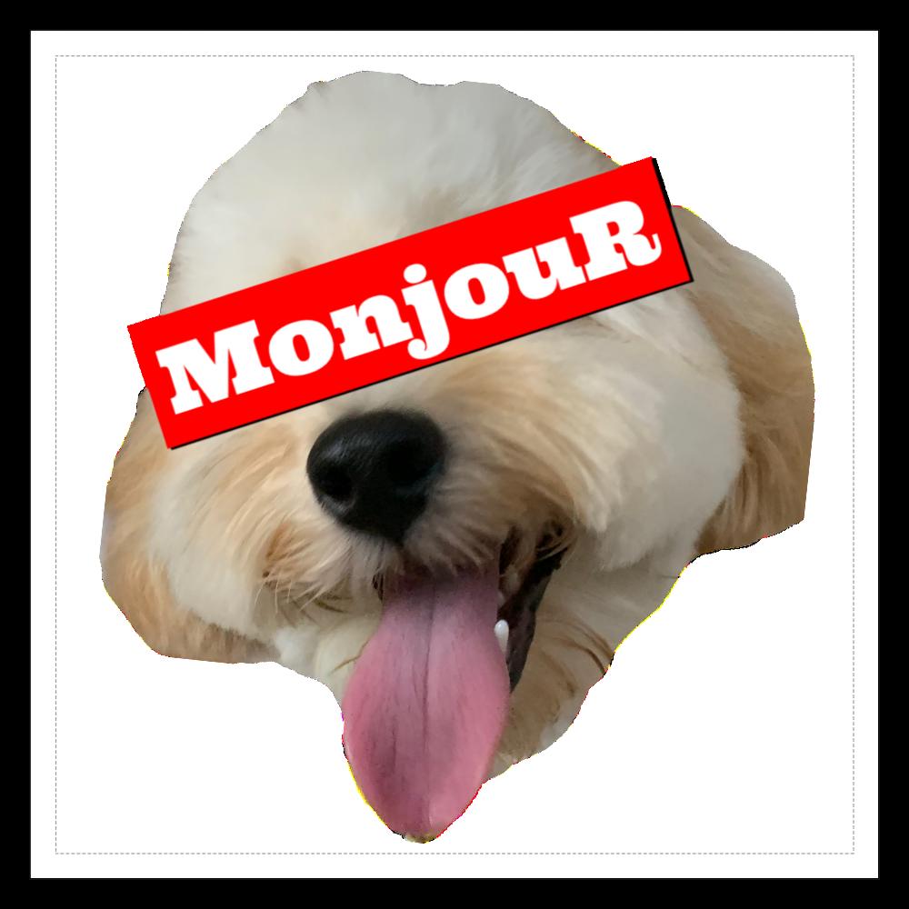 MonjouR シンボルマークプリント 100mmホワイトステッカー・シール