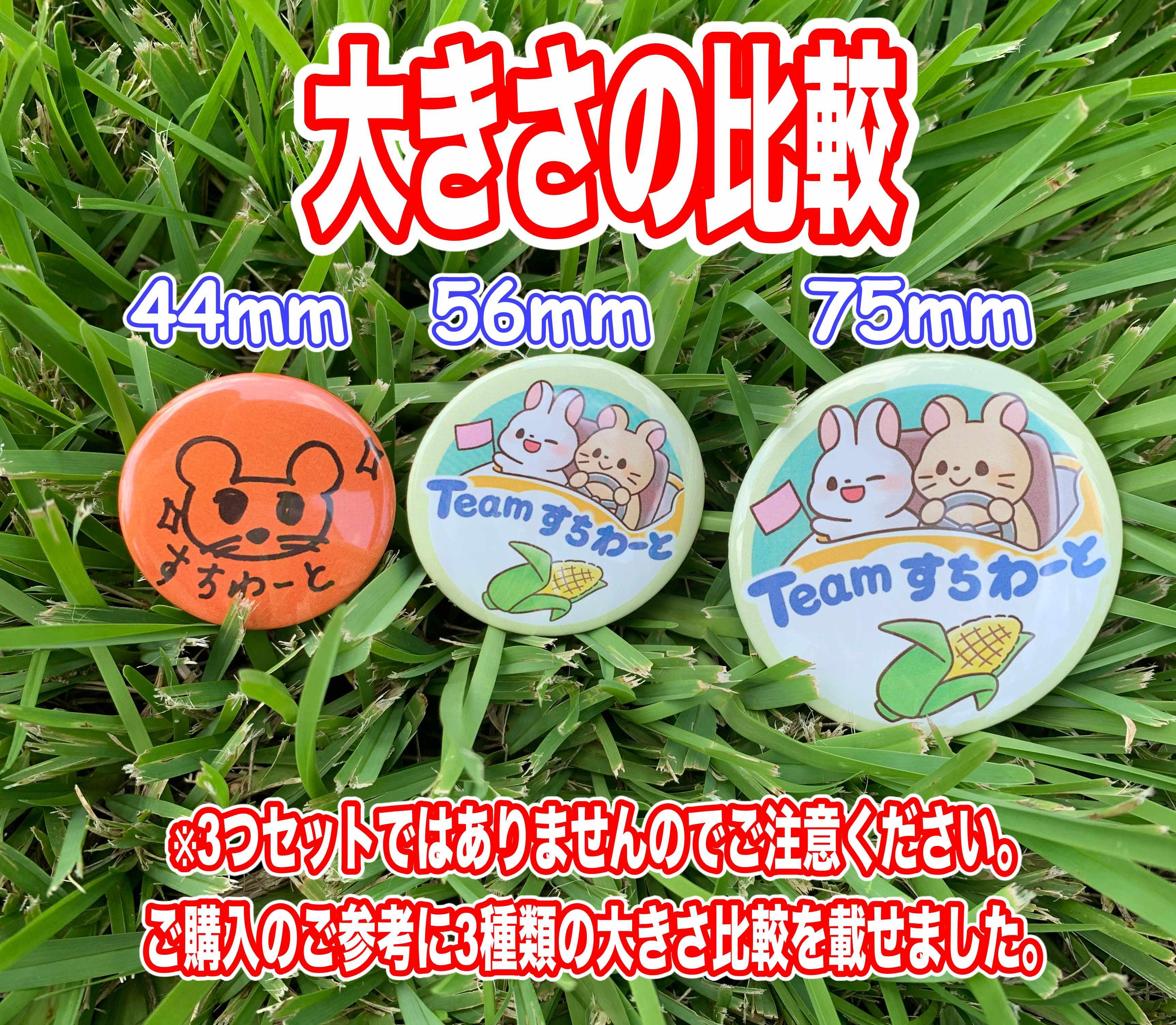 チームすちわーと缶バッジ(中)【ゴーカート】56mm 56㎜缶バッジ